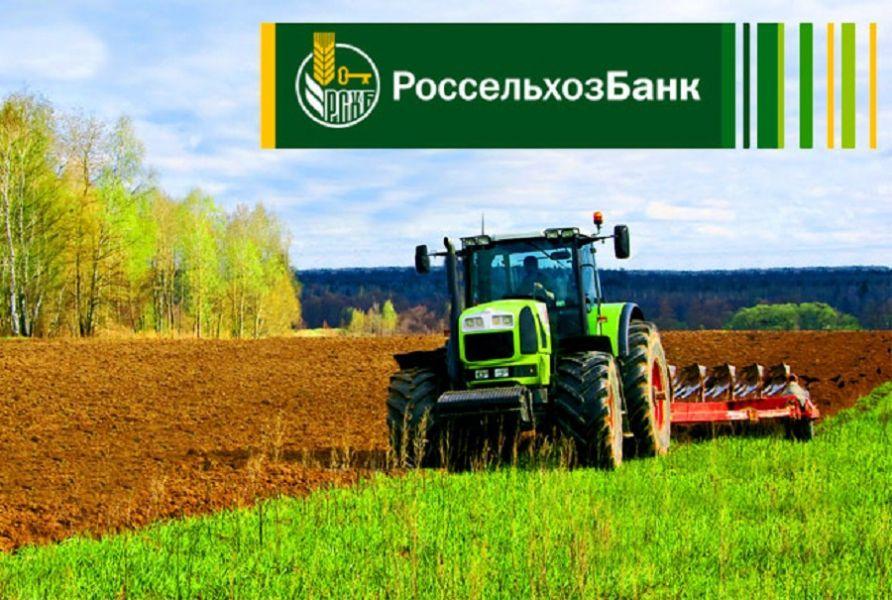 Чеченский филиал Россельхозбанка выдал 45 млн рублей на развитие бизнеса