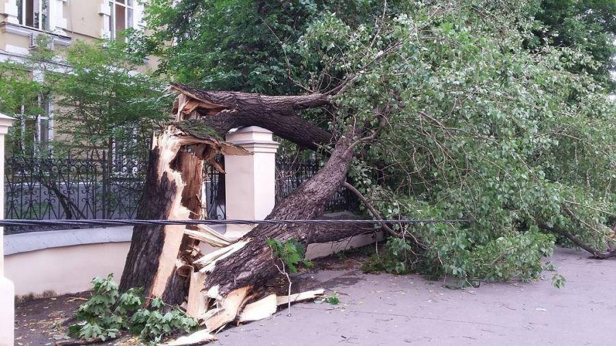 В результате урагана в Москве погибли четыре человека