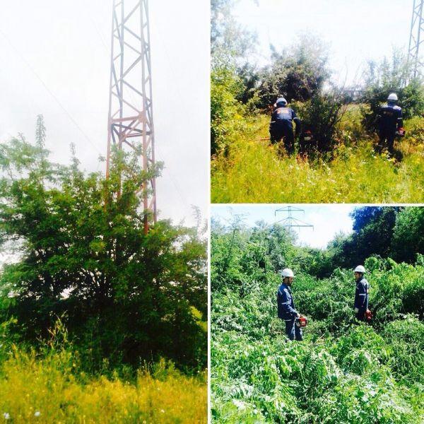 В Наурском районе проводят расчистку трасс от древесной и кустарниковой поросли