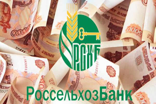 В Чеченской Республике на средства Россельхозбанка запущен завод по производству комбикорма