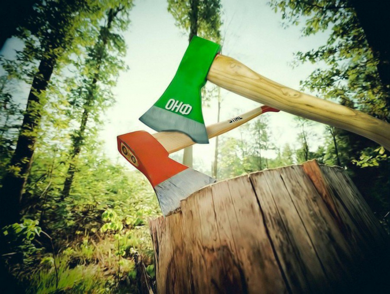 ОНФ призвал руководителей регионов взять создание «зеленых щитов» на особый контроль