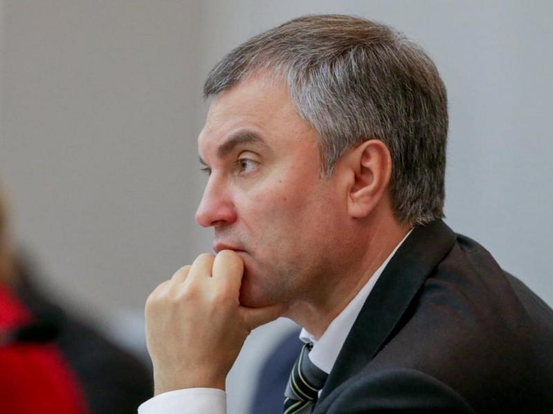 Вячеслав Володин предложил подумать о создании в региональных парламентах рабочих групп по  реализации Послания Президента