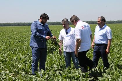 Активисты ОНФ в Чечне проверили ход реализации политики импортозамещения в сфере агропромышленного комплекса в регионе