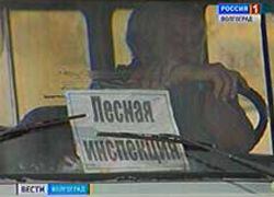 В Волгоградской области в связи с режимом ЧС введен полный запрет на посещение лесов