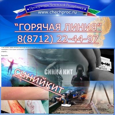 Прокуратура Чечни открыла «горячую линию» для спасения подростков от смертельных игр