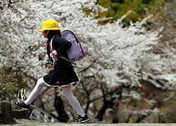 Фукусима: 20 км мертвой зоны