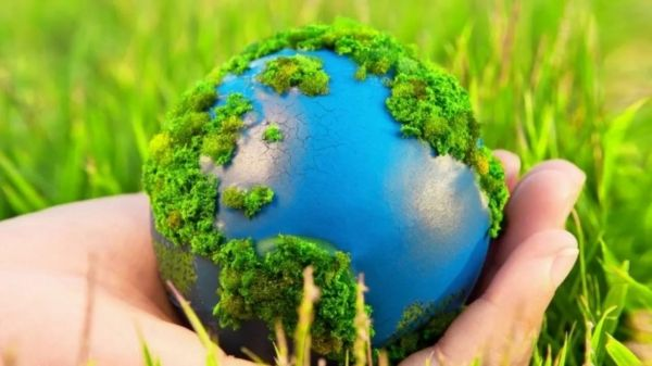 В Грозный съедутся экологи со всей России