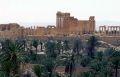 СБ ООН приравнял захват Пальмиры к теракту и обеспокоен судьбой мирных жителей