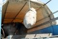 Спасатели МЧС обезвредили 500-килограммовую авиабомбу в Грозном
