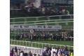 Скакуны Р. Кадырова заняли призовые места на скачках «Второй Раунд Мактум Челлендж» в Дубае