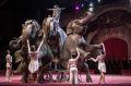 В Чечню приехал Международный цирк братьев Гартнер