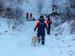 Потерявшиеся в лесах Чечни сборщики черемши найдены живыми и невредимыми