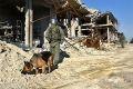 Четверо российских военных подорвались на фугасе в Сирии