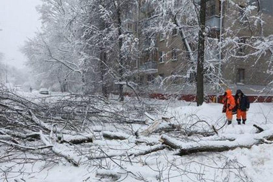 Фото: Олег Голод / РИА Новости