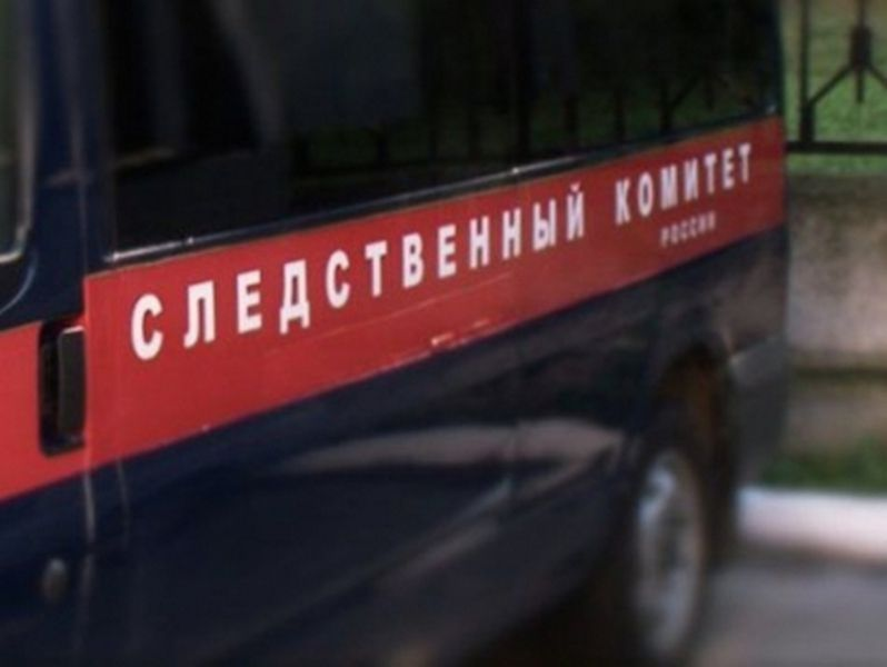 В Чечне 10-летний мальчик случайно выстрелил из отцовского ружья в младшего брата