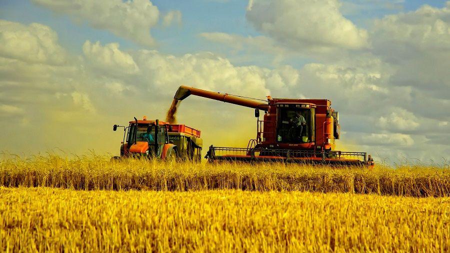 Надтеречный район лидирует по сбору урожая