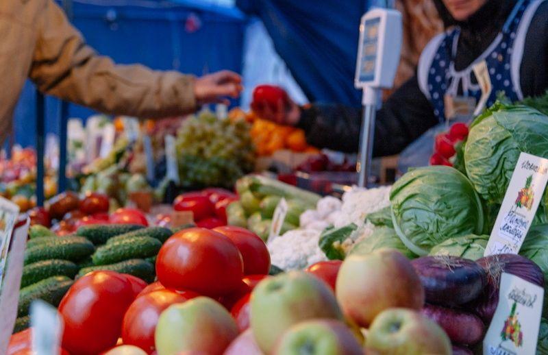 В Грозном проводятся ярмарки сельхозпродукции по низким ценам | ИА Чечня Сегодня