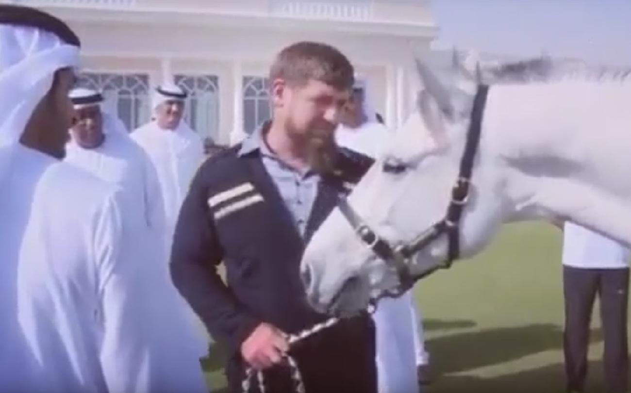Наследный принц Дубая подарил Рамзану Кадырову самую выносливую